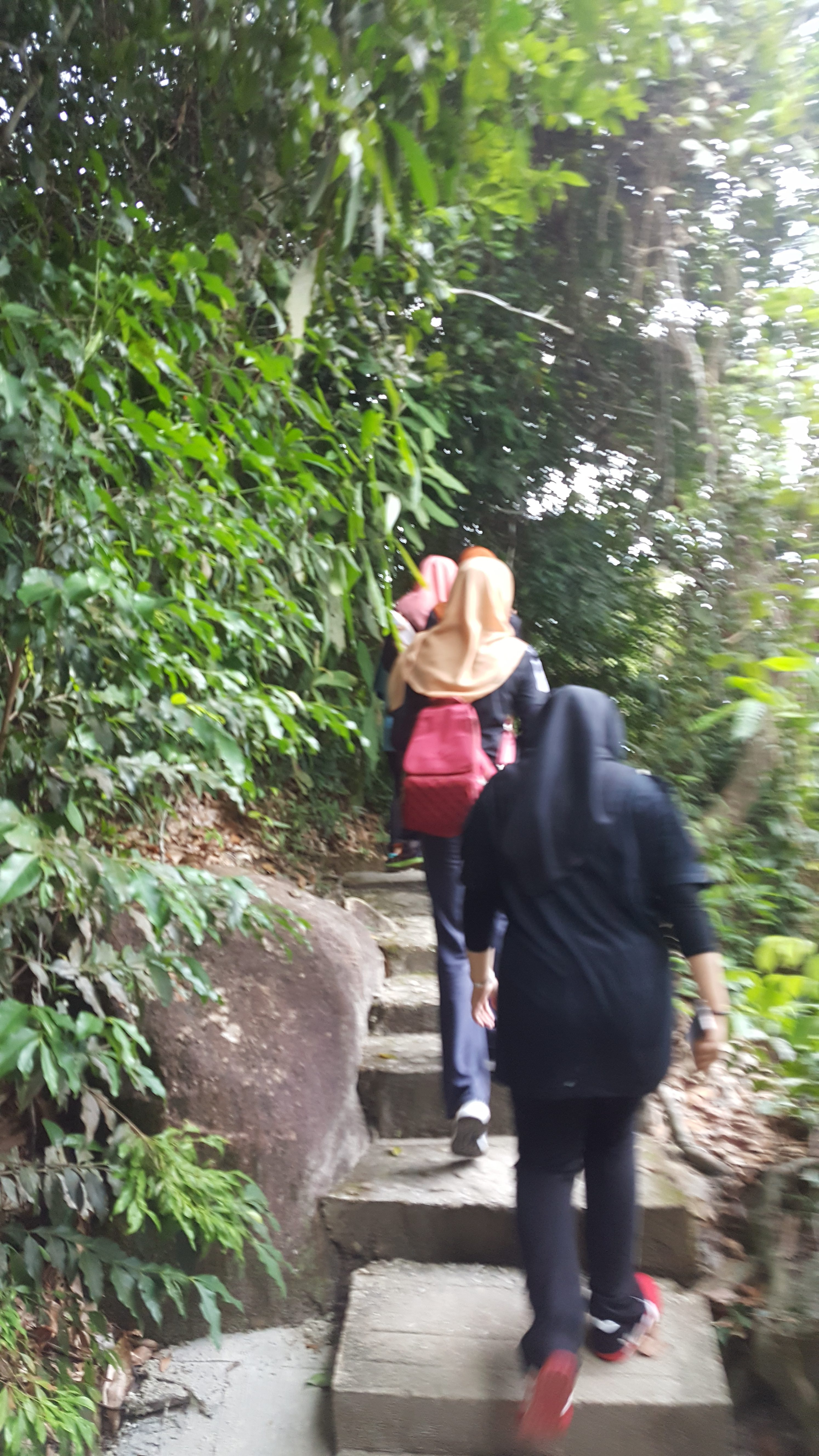 hiking taman negara pulau pinang 3
